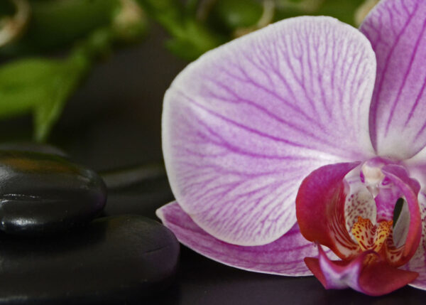 Nalinrats Hälso- & Thaimassage
